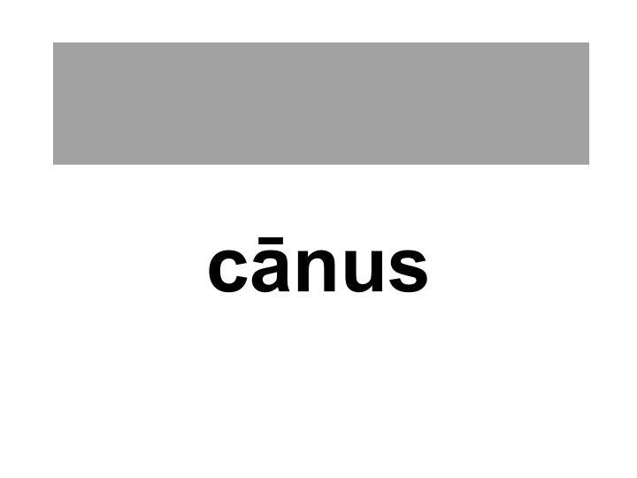 cānus