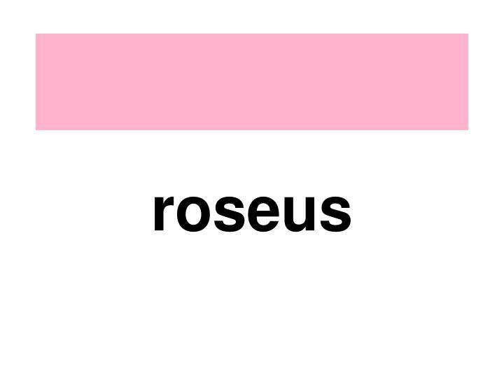 roseus