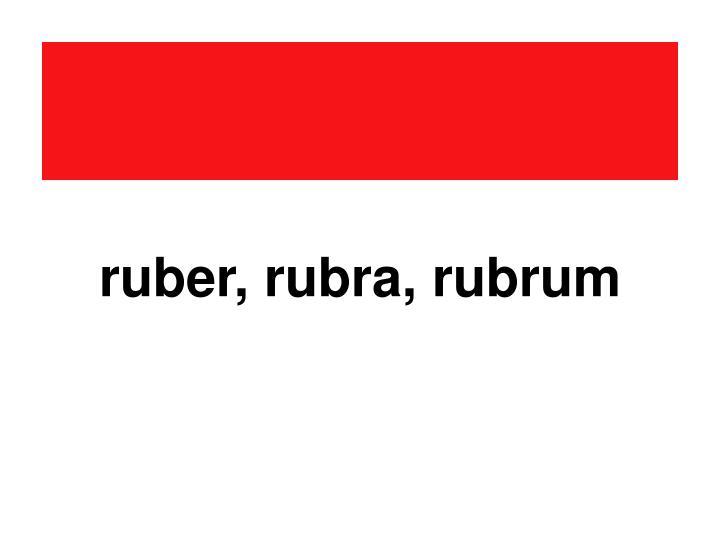 ruber, rubra, rubrum
