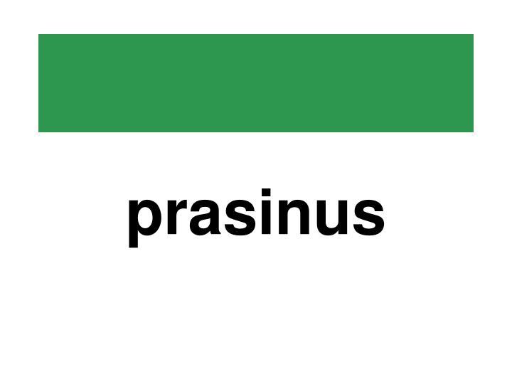 prasinus