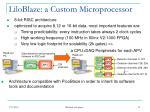 liloblaze a custom microprocessor