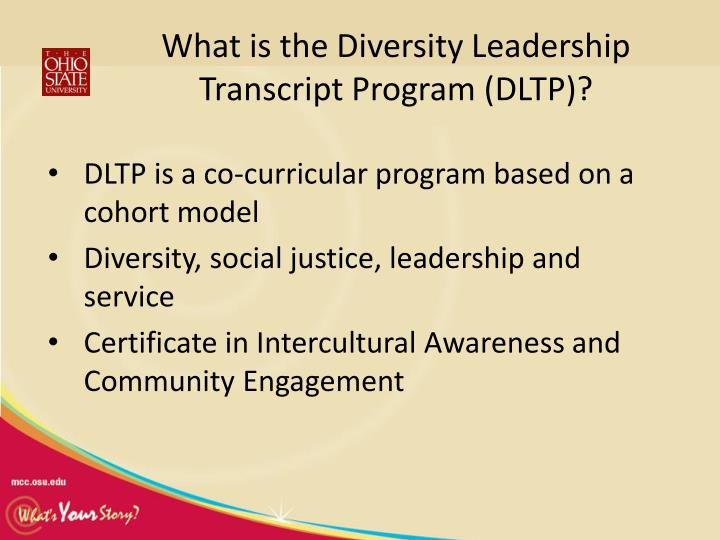 What is the Diversity Leadership Transcript Program (DLTP)?