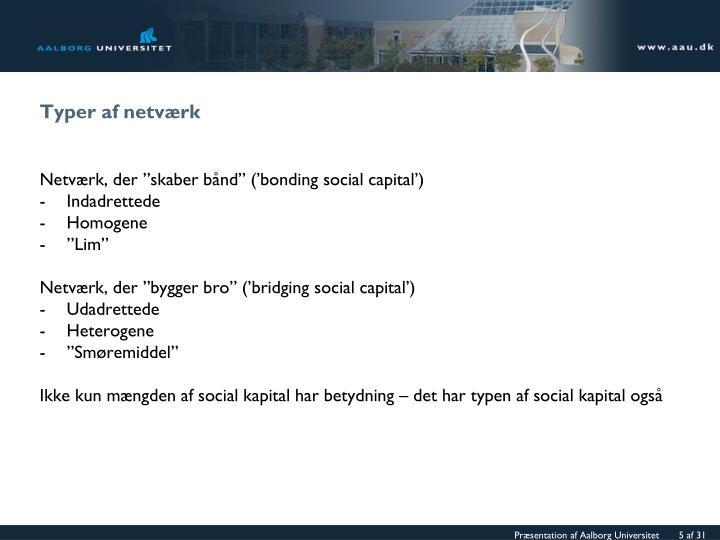 Typer af netværk