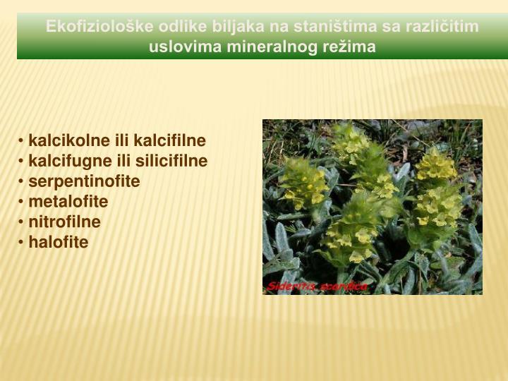 Ekofiziološke odlike biljaka na staništima sa različitim
