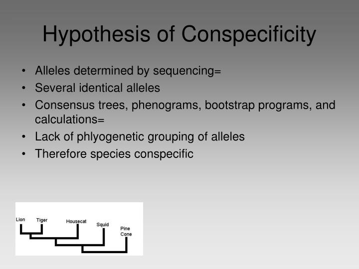 Hypothesis of Conspecificity