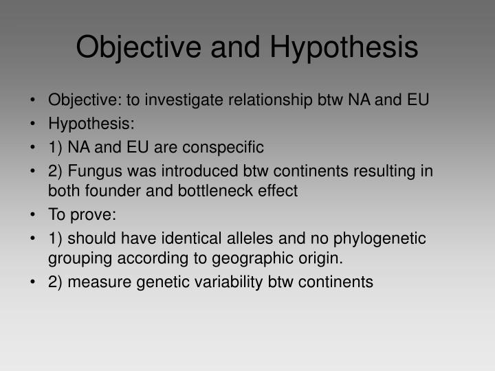 Objective and Hypothesis
