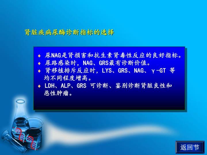 肾脏疾病尿酶诊断指标的选择