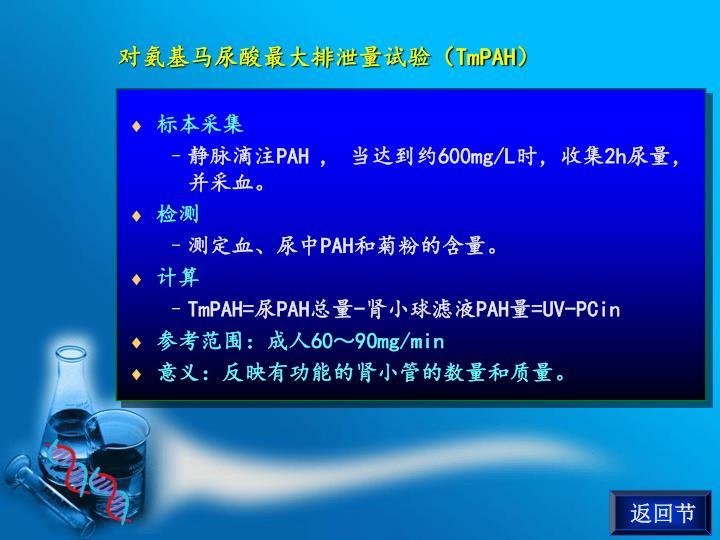 对氨基马尿酸最大排泄量试验(