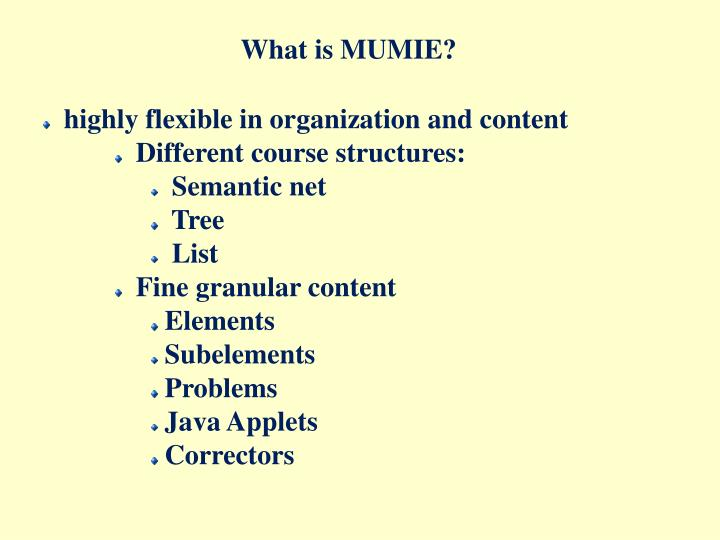 What is MUMIE?