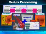 vertex processing1