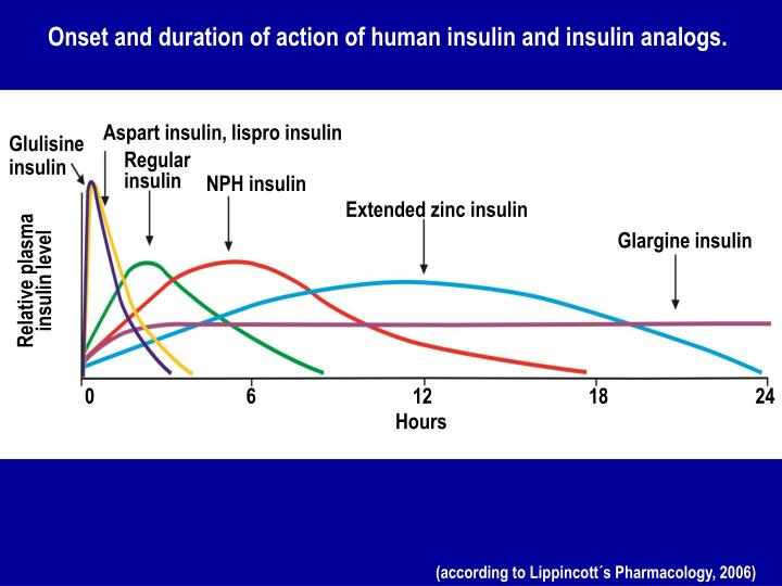 Onset and duration of action of human insulin and insulin analogs.