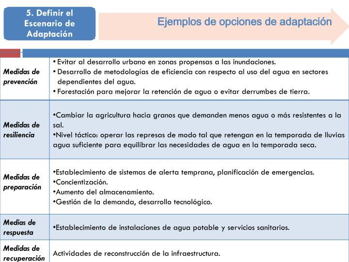 Ejemplos de opciones de adaptación