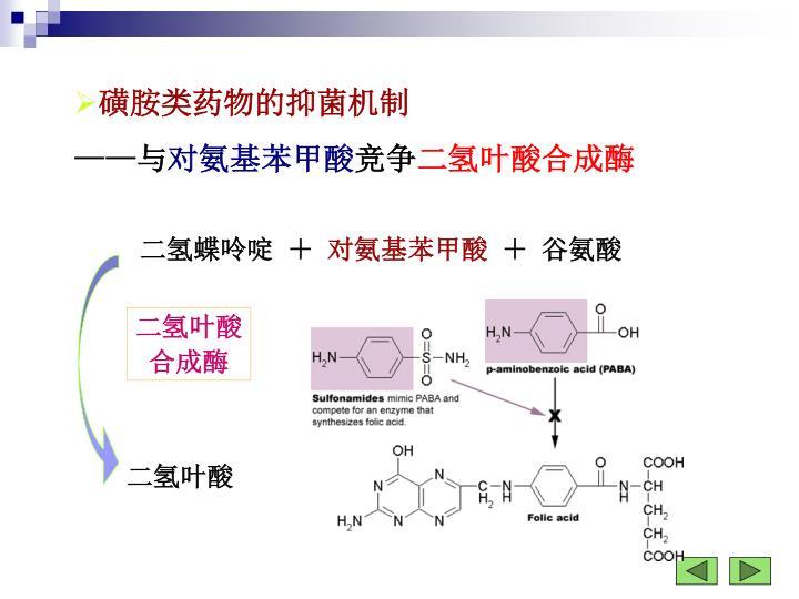 磺胺类药物的抑菌机制