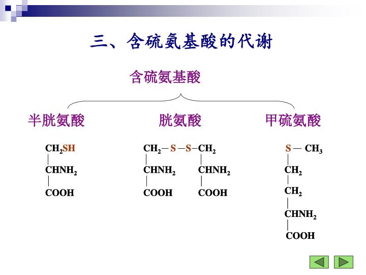 含硫氨基酸