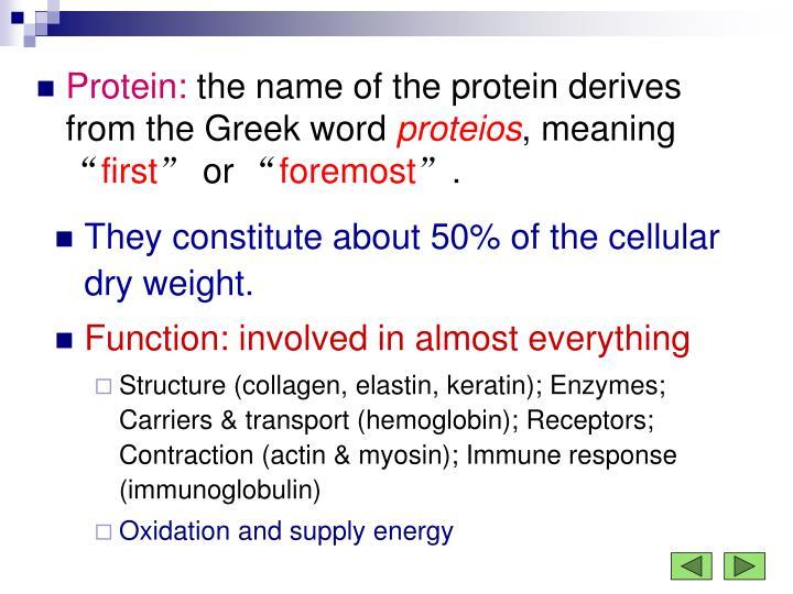 Protein:
