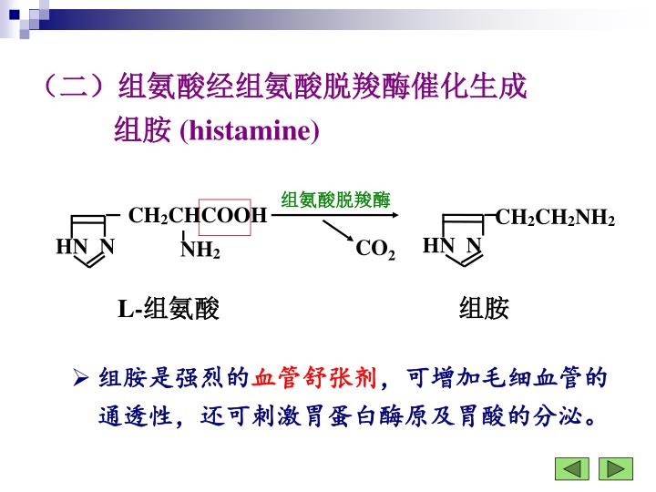 组氨酸脱羧酶
