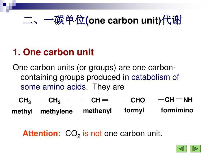 二、一碳单位