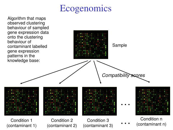 Ecogenomics