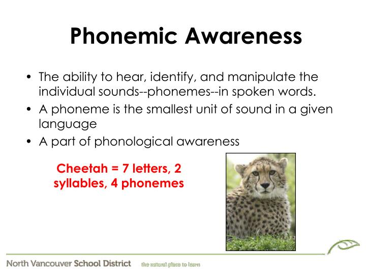 phonological awareness phonemic awareness ppt The difference between phonological and phonemic awareness june 27,  the whole day will be filled with presentation from experts about all aspects of dyslexia the conference is geared towards parents and educators, from those looking for basic information to those who already have a lot of experience  phonological awareness skills are.
