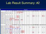 lab result summary 2