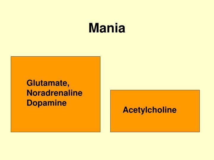 Glutamate, Noradrenaline Dopamine