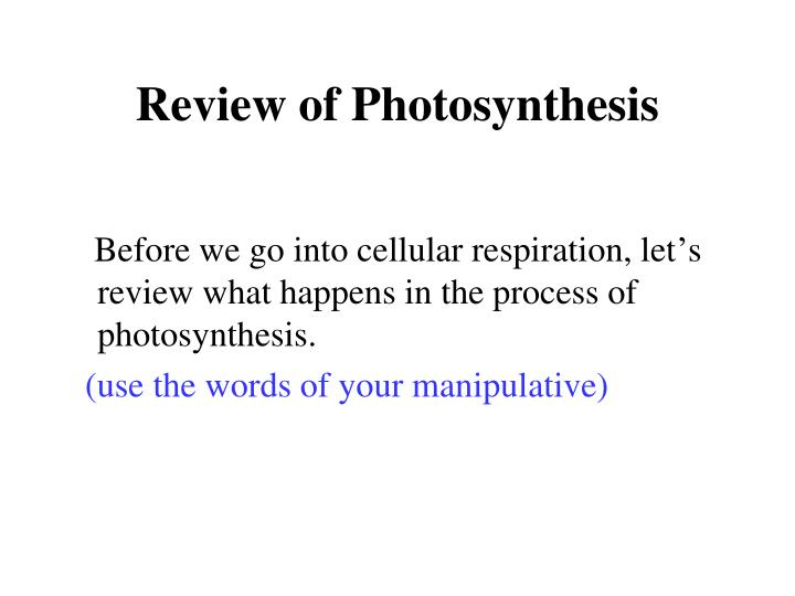 Review of Photosynthesis