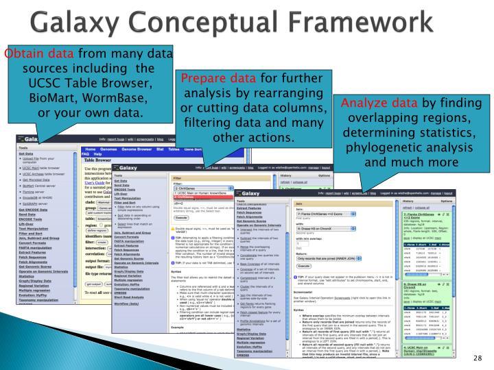 Galaxy Conceptual Framework