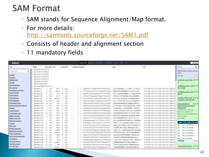 SAM Format