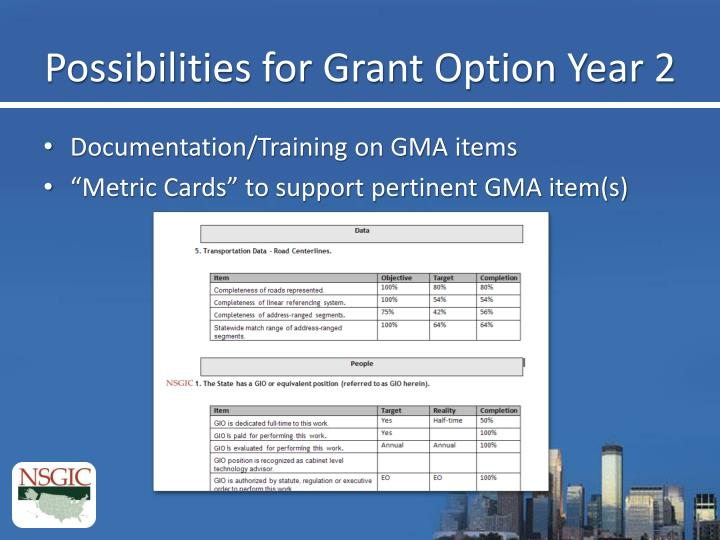Possibilities for Grant Option Year 2