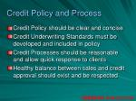 credit policy and process