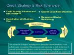 credit strategy risk tolerance