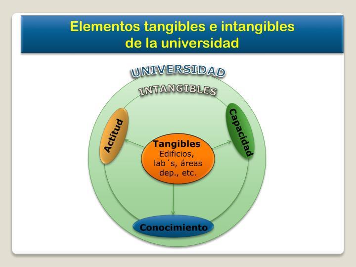 Elementos tangibles e intangibles