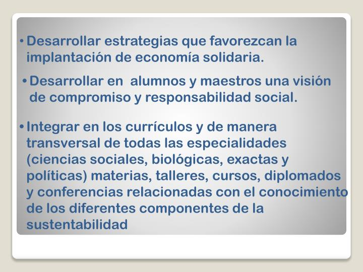 Desarrollar estrategias que favorezcan la implantación de economía solidaria.