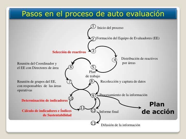 Pasos en el proceso de auto evaluación