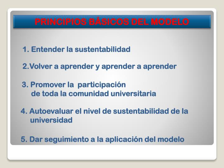 PRINCIPIOS BÁSICOS DEL MODELO