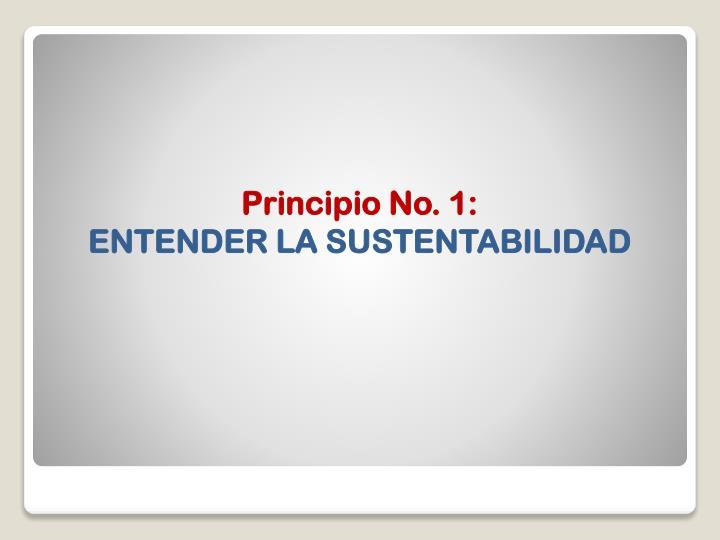 Principio No. 1: