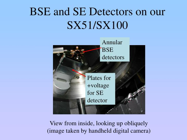BSE and SE Detectors on our SX51/SX100