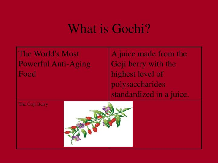 What is gochi