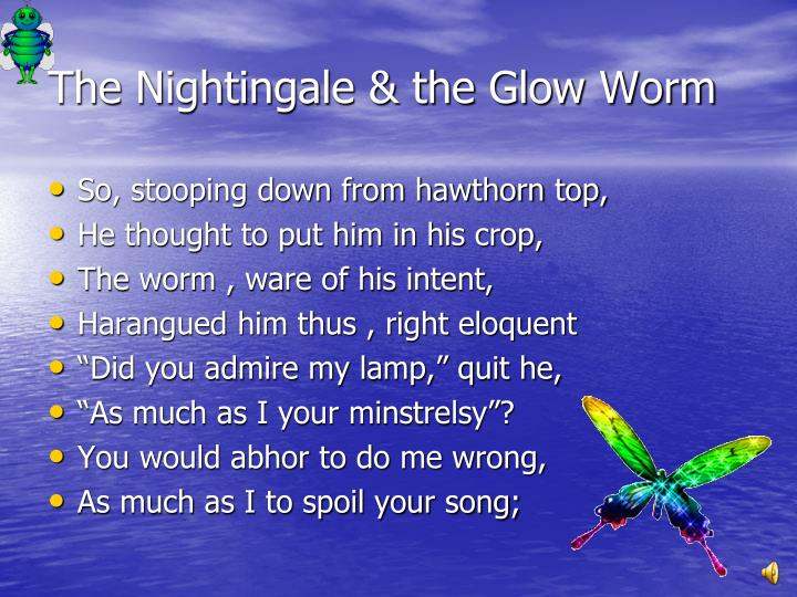 PPT - The Nightingale And Glow Worm PowerPoint ...