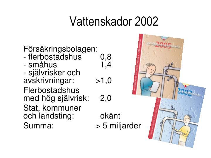 Vattenskador 2002