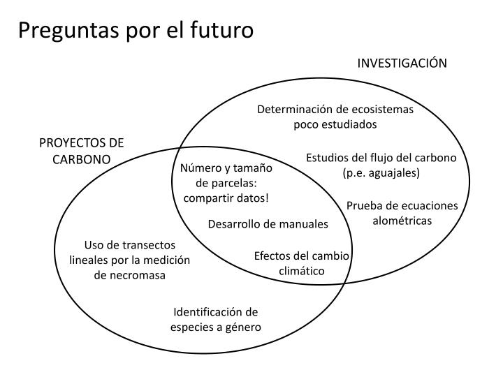 Preguntas por el futuro