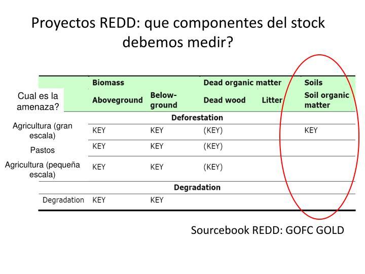 Proyectos REDD: que componentes del stock debemos medir?
