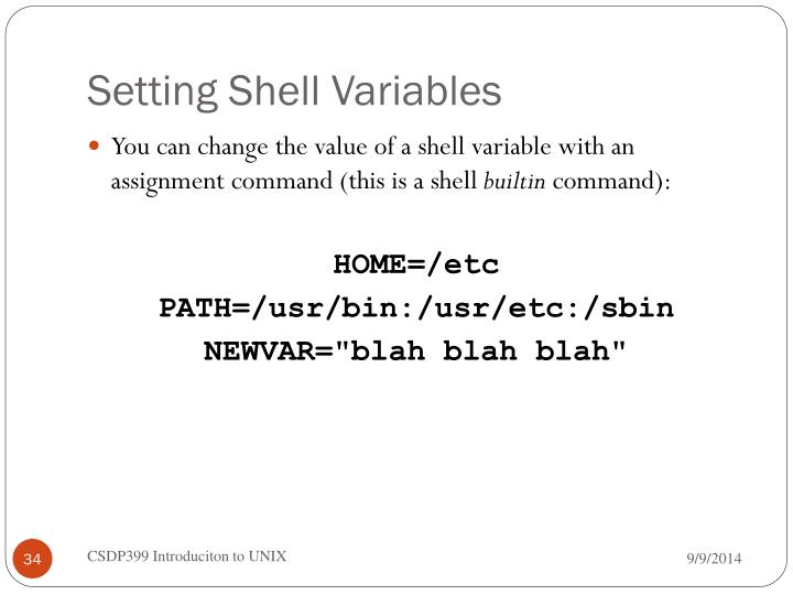 Setting Shell Variables
