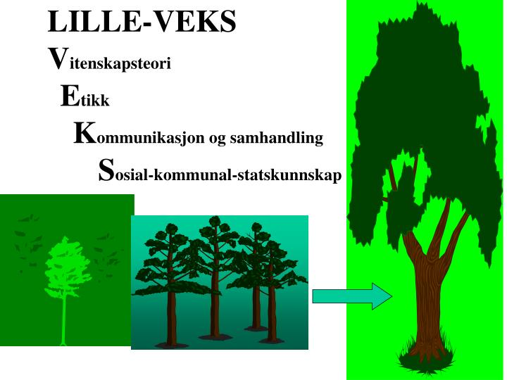 LILLE-VEKS
