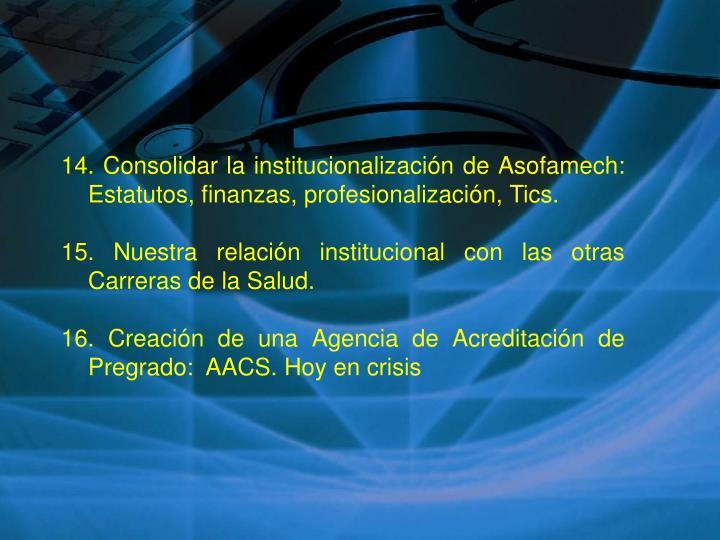 14. Consolidar la institucionalización de Asofamech: Estatutos, finanzas, profesionalización, Tics.
