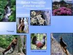 natural reservation protected species