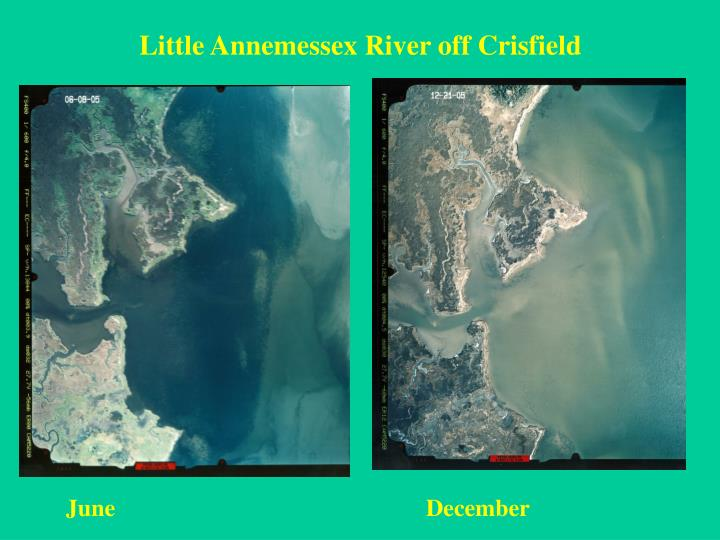 Little Annemessex River off Crisfield