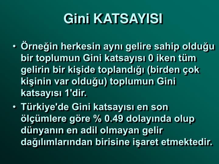 Gini KATSAYISI