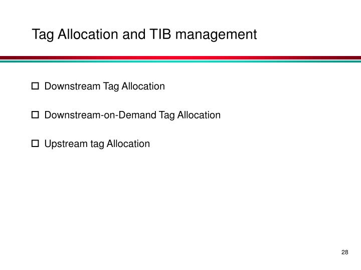 Tag Allocation and TIB management