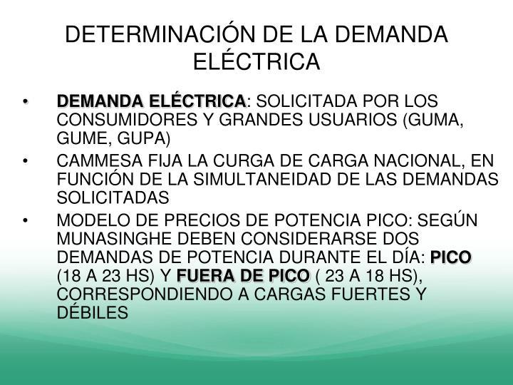 DETERMINACIÓN DE LA DEMANDA ELÉCTRICA